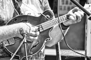 music mandolin black and white