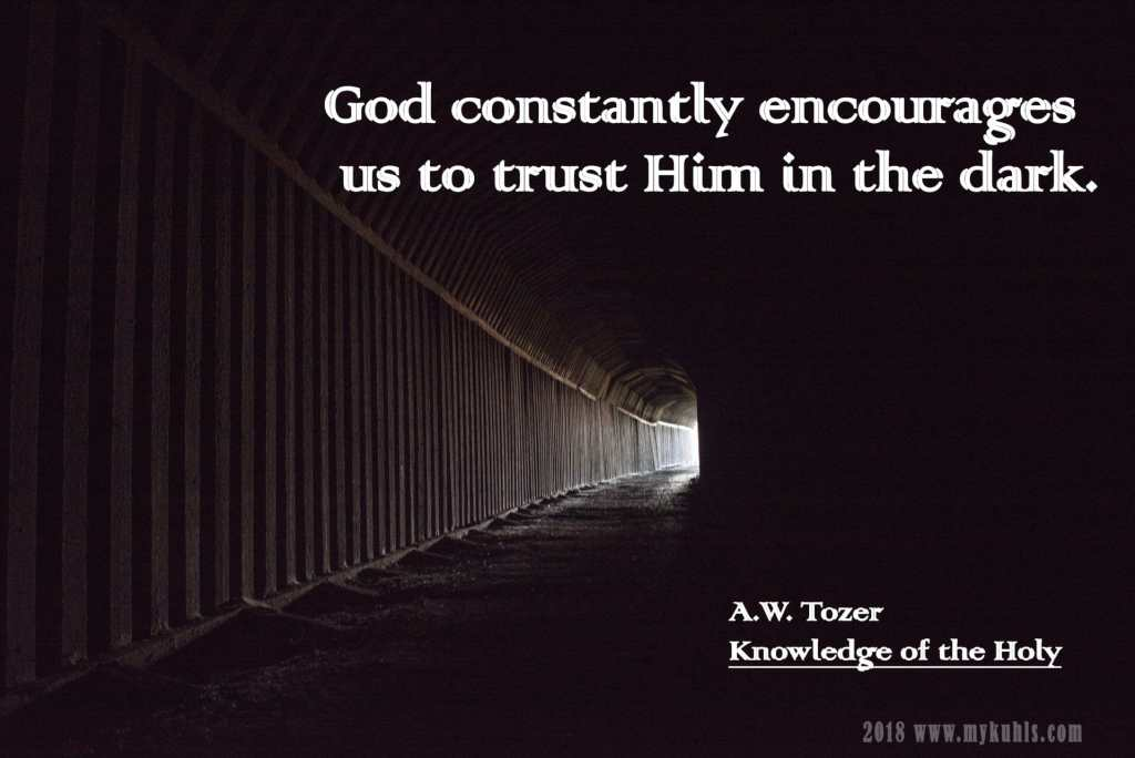 Courage Tozer trust God in the dark