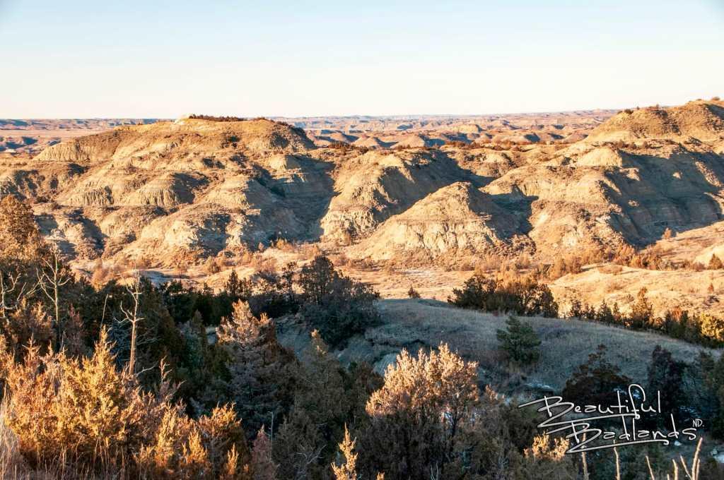 ridgeline trail looking north
