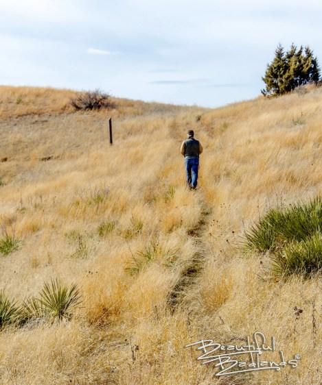 summit trail grassland