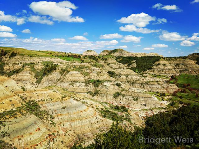 Theodore Roosevelt National Park in North Dakota, by Bridgett Weis. June 2019