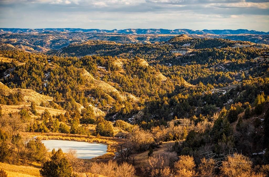north dakota badlands evergreen trees, hills and sunset