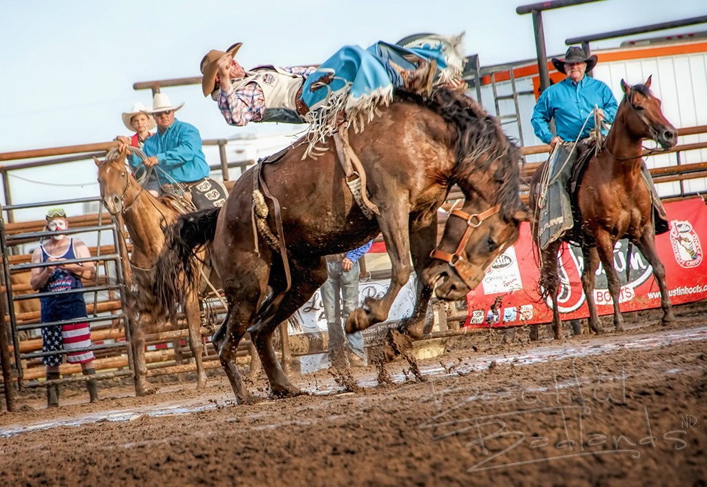 bareback bronc rodeo