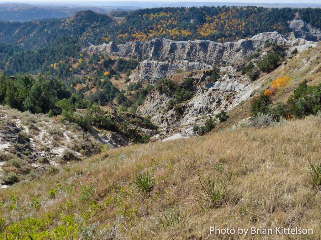 Woodlands, Cliffs, and Grasslands of the Maah Daah Hey Trail in western North Dakota.