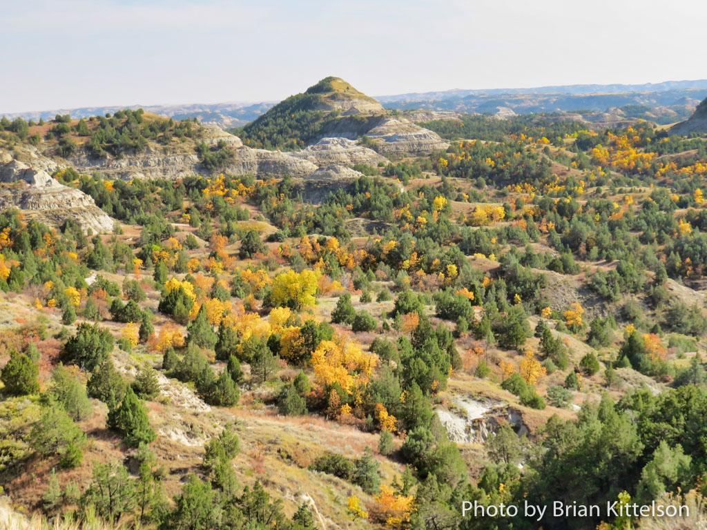 Brilliant Fall Colors in the North Dakota Badlands