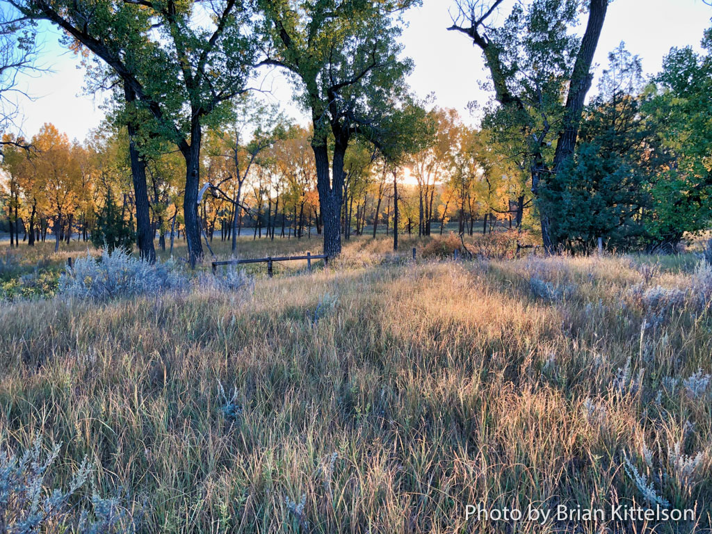 """Theodore Roosevelt's Elkhorn Ranch northwest of Medora, North Dakota. Here stood a large log home and several out buildings. It was from this serene and peaceful spot that Theodore Roosevelt penned """"Ranch Life and the Hunting Trail""""."""