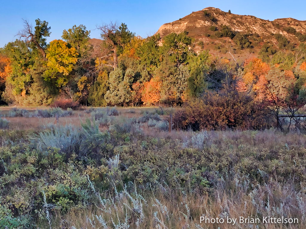 Sunrise is the best time to begin a fall ride on the Maah Daah Hey Trail. Here the scenes at Elkhorn Ranch Campground are beautiful with fall colors.