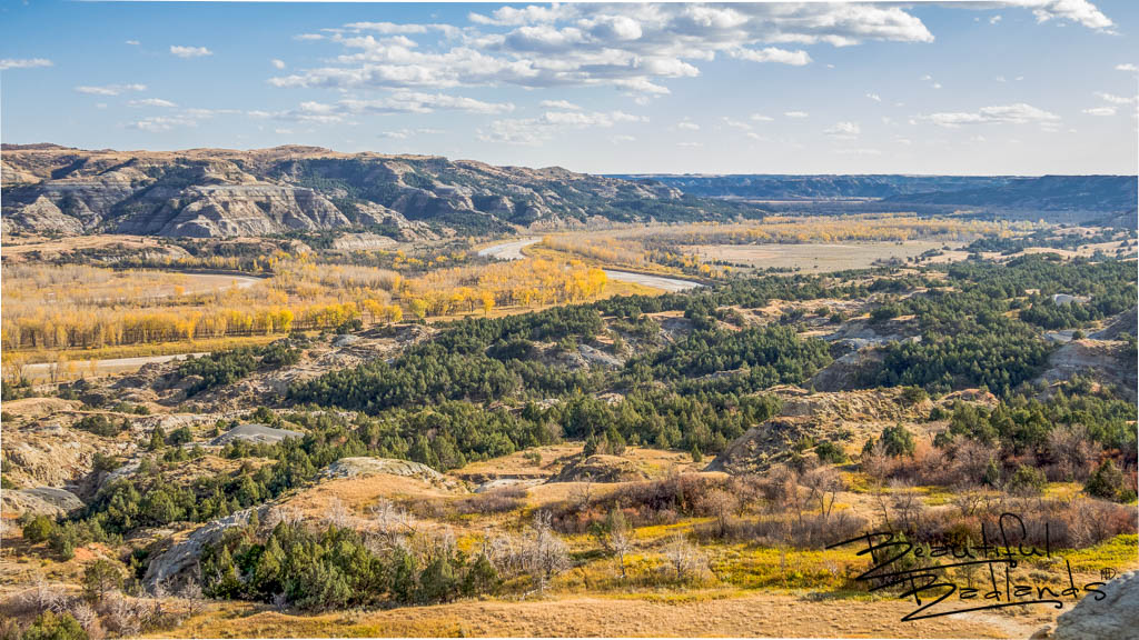 Crisp fall days in the Badlands of North Dakota are a favorite for us. Hiking is easy, the air is fresh, and the colors are spectacular! Brilliant yellowing cottonwood trees contrast with the ever green cedars, and the Little Missouri River runs low and slow as it meanders towards the Missouri River, not far east of this area. Read more about the North Unit here: https://wp.me/p8zmWn-1m Purchase this photo here: http://bit.ly/380oxPC