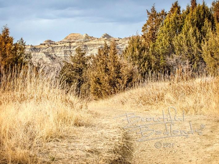 long x trail, dry grass, path, hills, badlands