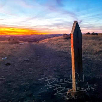 Petrified Forest Trail marker