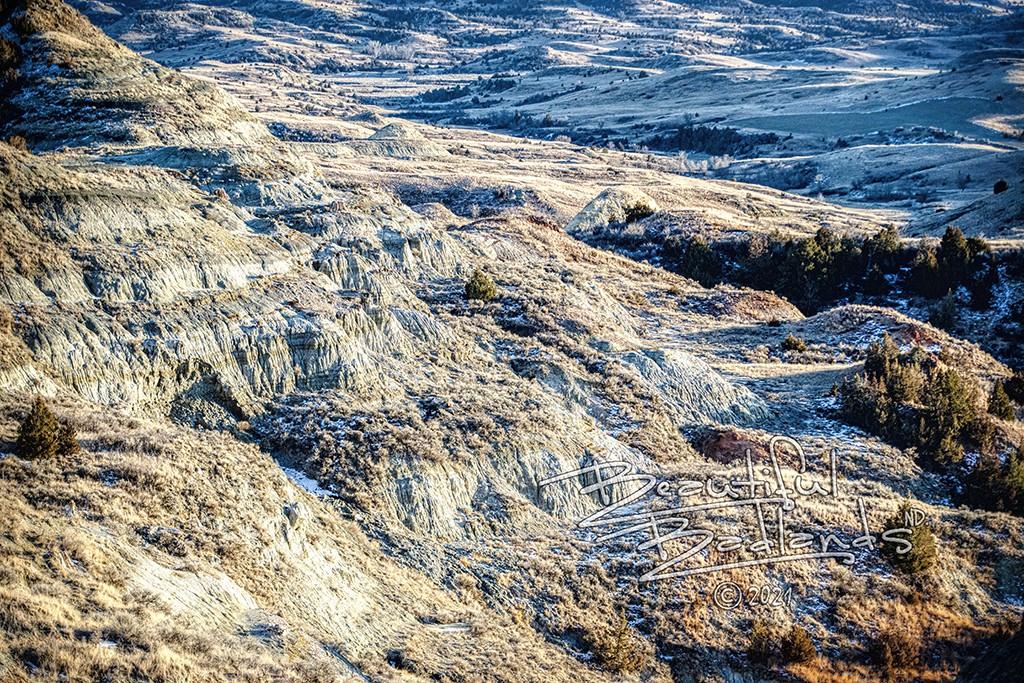 winter blue landscape petrified forest trail