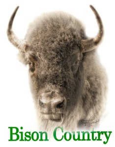 Bison Country!  Sepia Bison Portrait with Green Text