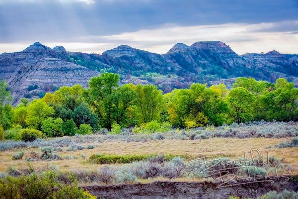 blue hour on the buttes in the North Unit of Theodore Roosevelt National Park, contrasting the bright green trees which are just beginning to turn fall gold
