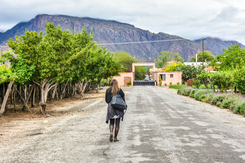 , Our Short, but Memorable stay in Cafayate