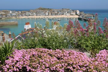 St Ives from Malakoff Gardens