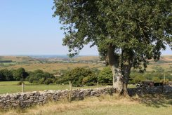 Corfe Castle, from Kingston