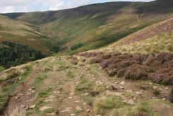 Grindsbrook Clough, from footpath to The Nab
