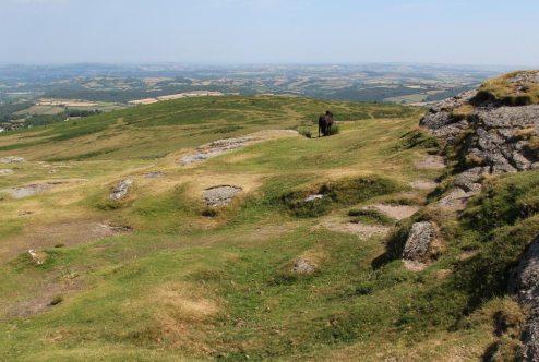 Haytor Down, Haytor, Dartmoor