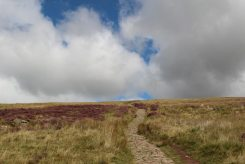 Path to Pen y Fan, Brecon Beacons