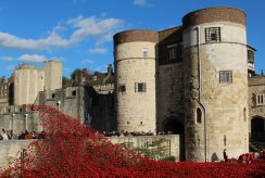 Cascade of poppies, Byward Tower, Tower of London