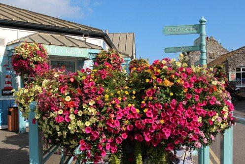 Flower display, Beach Hut Cafe, Mumbles