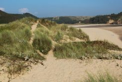 Sand dunes, Three Cliffs Bay, Gower
