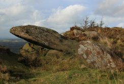 Gritstone boulders, The Roaches