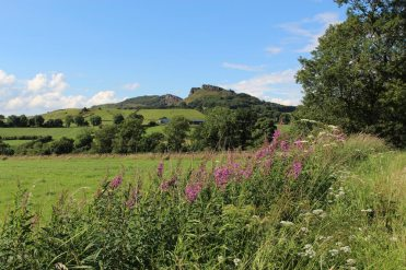 The Roaches, from A53 road from Leek