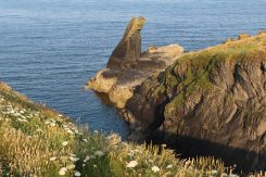 Bumble Rock, Lizard Point