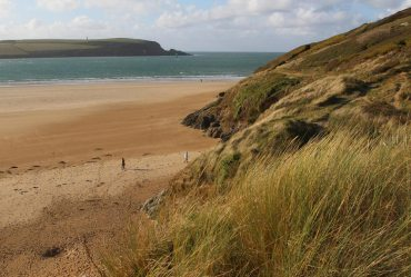 Stepper Point and Daymer Bay, Rock