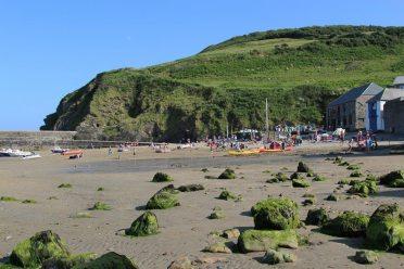Beach, Gorran Haven