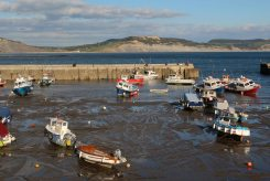 Jurassic Coast and the Harbour, Lyme Regis