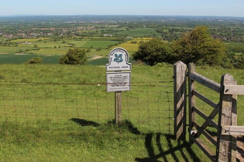 Ditchling Down, South Downs Way