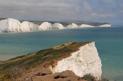 Cliff top erosion by rabbits and Seven Sisters