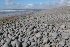 Pebble Ridge, Westward Ho!