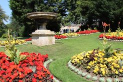 Flower display, Royal Victoria Park, Bath