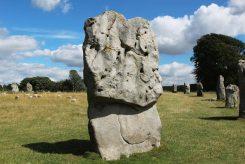 Stones, South West Sector, Avebury Henge