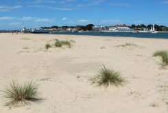 Beach, Shell Bay, Studland