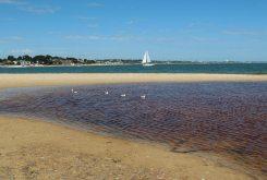 Beach, Shell Bay, Studland