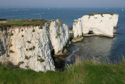 Old Harry Rocks, Studland