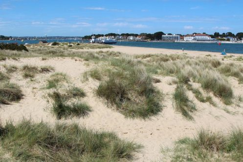Sand dunes, beach, Shell Bay, Studland