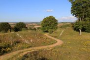 Danebury Hill Fort