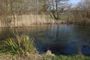 River Test, Whitchurch