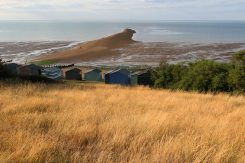Beach huts and The Street, from Tankerton Slopes, Whitstable