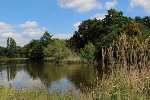Garden Lake, Osterley Park and House, Isleworth