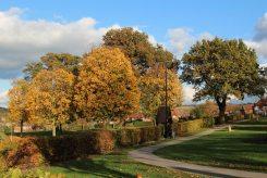 Mansfield Road Recreation Ground and Memorial Garden, Eastwood