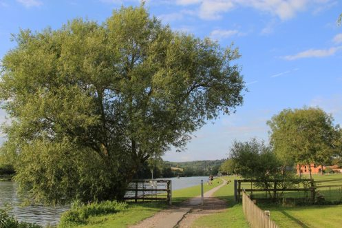 Thames Path, Remenham