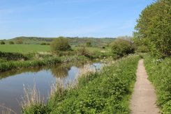 Towpath, Kennet and Avon Canal, between Pewsey Wharf and New Mill