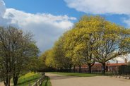 Barge Walk, River Thames, Hampton Court Palace