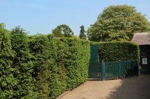 Entrance, The Maze, Hampton Court Palace
